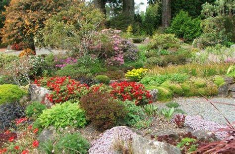 costruire giardino roccioso come costruire un giardino roccioso come fare tutto
