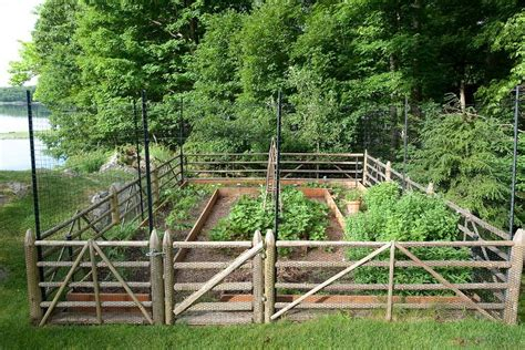Fencing Ideas For Vegetable Gardens Garden Fence Ideas For Great Home And Garden