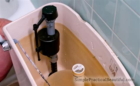 Toilet Faucet Leak by How To Fix A Leaky Toilet Valve Simple Practical Beautiful