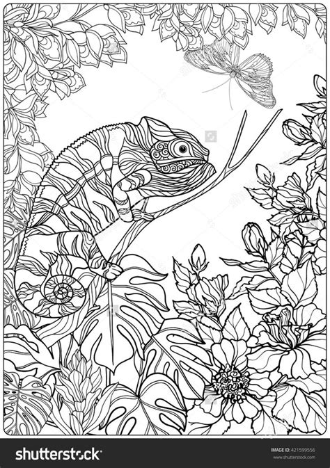 tropical leaves coloring pages 1072 best adult colouring animals zentangles images on