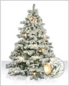 flocked christmas trees happy holidays