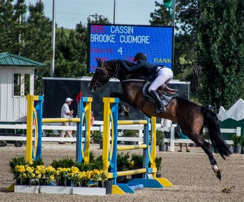 Horse Tack Giveaway 2017 - summer horse shows at the colorado horse park budget equestrian