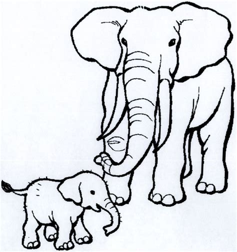 coloring sheets african animals 71 best the big five images on pinterest animales