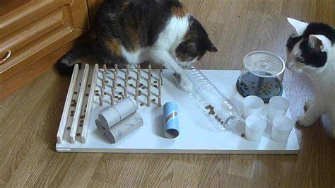 einzigartiges design interaktives katzenspielzeug box