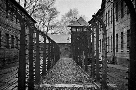 the fate holocaust memories transmission στρατόπεδα συγκέντρωσης hieronymus bosch 1450 1516