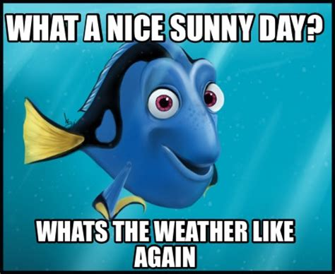 What A Meme - meme creator what a nice sunny day whats the weather