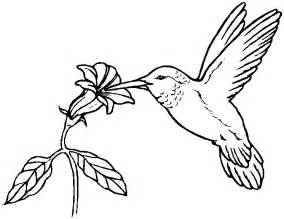 hummingbird coloring pages free do tornadoes coloring pages