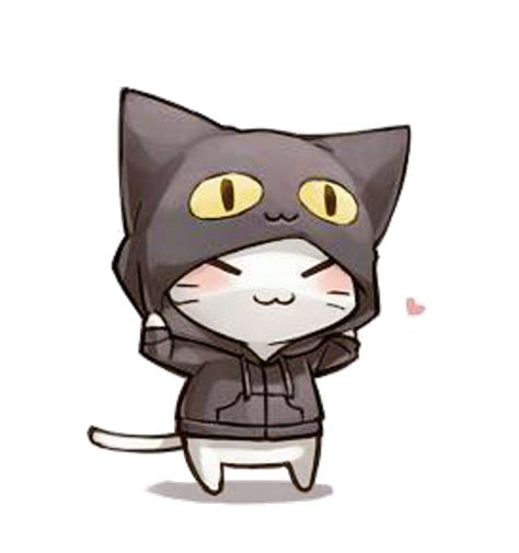 imagenes kawaii de gatos key danni key 353 answers 478 likes askfm