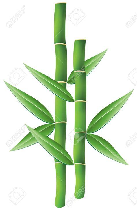 bamboo clip bamboo shoot bamboo leaves clipart