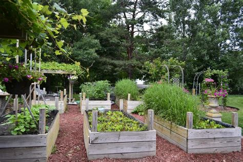 garden raised beds raised garden bed ideas house beautiful design