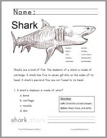 free printable shark worksheet for grades 1 3