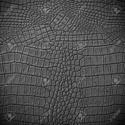 pattern in zbrush 43 best images about texture on pinterest photo black