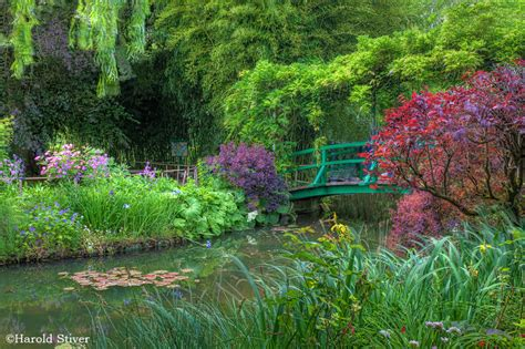 garten monet monet s garden nature notes