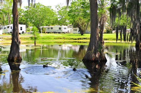 winter garden rv and cing resort orlando rv parks news from the trail