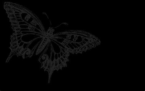 wallpaper black butterfly black butterfly backgrounds wallpaper cave