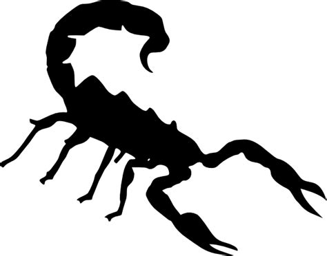 scorpion clipart scorpion clip at clker vector clip