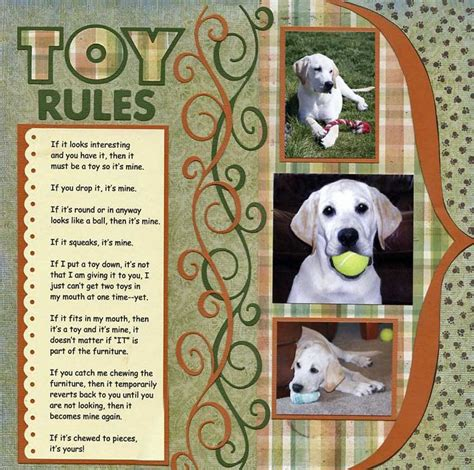 scrapbook layout ideas for pets 495 best images about scrapbooking dogs on pinterest a