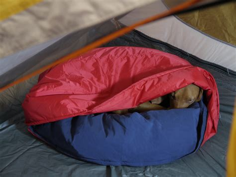 how to make a sleeping bag out of a comforter get your dog out of your sleeping bag and into his own