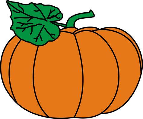 squash clipart squash clipart orange fruit vegetable free clipart on