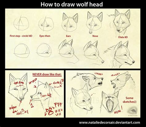 illustrator tutorial wolf 72 best the wolf you feed images on pinterest fox fox
