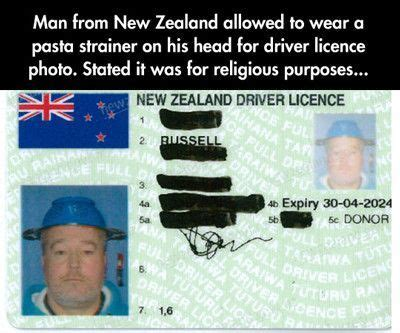 zealand meme google search funny pictures funny