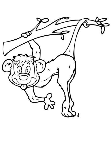spider monkey coloring pages coloring home