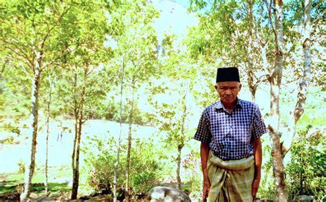 Kasur Kapuk Makassar gowa mongabay co id
