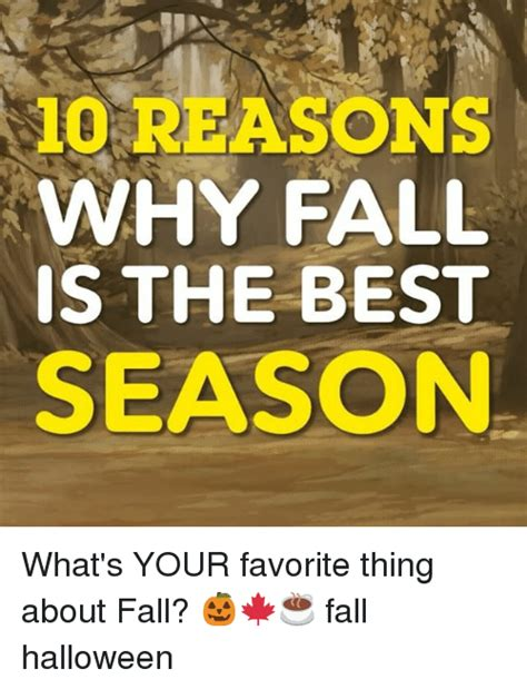 why fall is the best season 25 best memes about reasons reasons memes