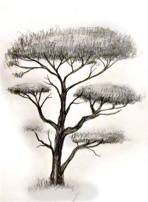 tree drawing 178 best images about drawing help on perspective drawing trees and tutorials