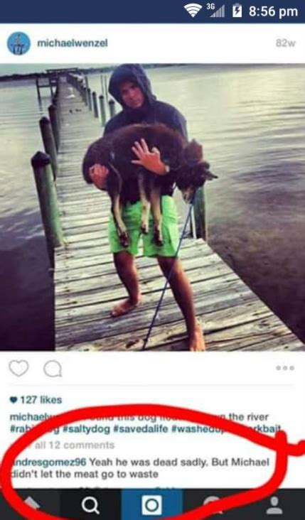 man dragged shark behind boat the florida men who filmed themselves dragging a shark