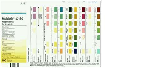 Alat Tes Protein Urin berbagi info teknologi alat kesehatan urine analyzer