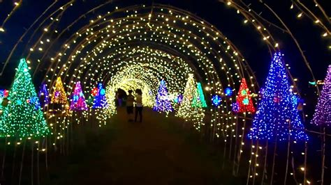 walking the along the lighted arch magical field of