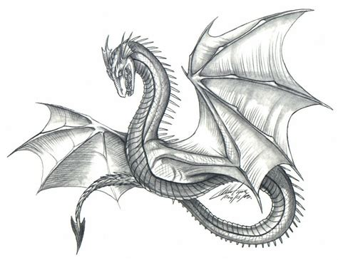 Drawing Dragons by Style By Psycrowe On Deviantart