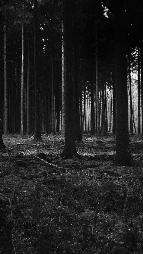 wallpaper iphone 6 forest forest dark scary night trees nature iphone 6 wallpaper