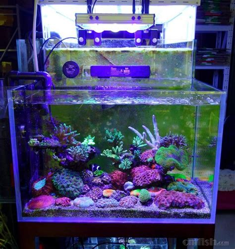Lu Led Aquarium Diy 2015 ctlite g4 mobile app intelligent diy aquarium led light bar for coral reef from ct lighting
