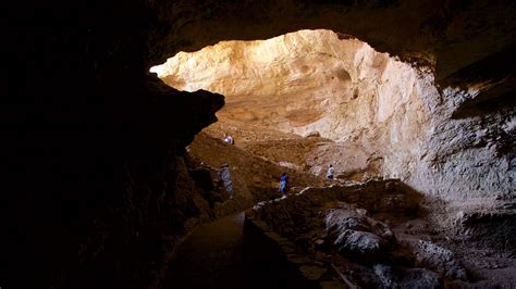 carlsbad park carlsbad caverns national park pictures view photos images of carlsbad caverns