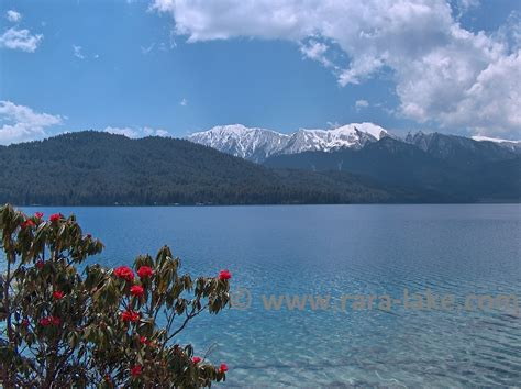 Rara All rara lake west nepal pictures photos trekking
