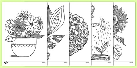 plants  growth themed mindfulness colouring sheets