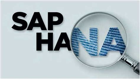 Supplier Shema Top By Hana sap hana ranked one among top 10 modern it skills for highest paying