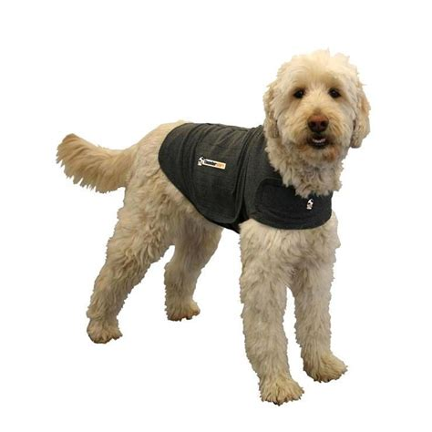 thunder shirts for dogs and anxiety aides