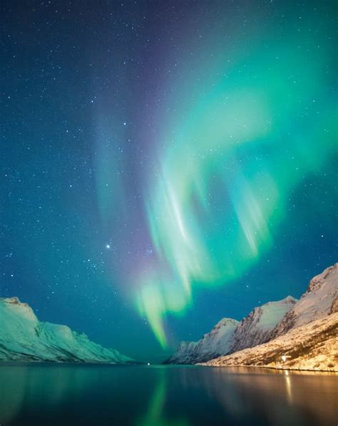 trips to see northern lights 2018 northern lights in tromso holidays 2018 2019