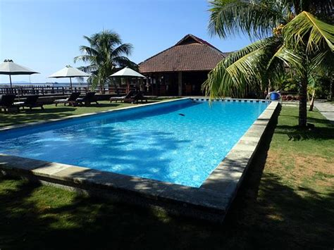 lombok dive resort cocotinos boutique dive resort manado sulawesi