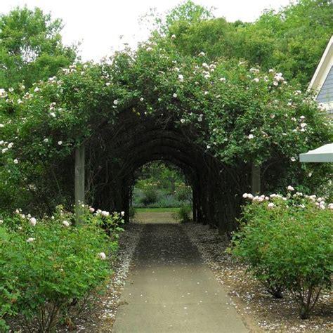 create  magical secret garden hgtv