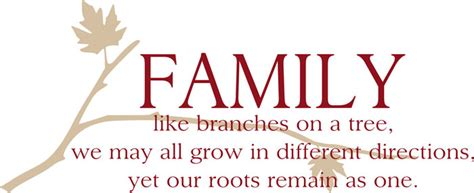 are you a branch on our family tree us history family wall art family like branches on a tree