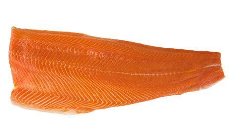 Salmon Fillet Norwey Frozen 200gr Premium salmon fillets e trim europa epic cure