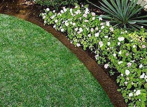 fiori perenni da bordura bassa bordure per aiuole tecniche di giardinaggio