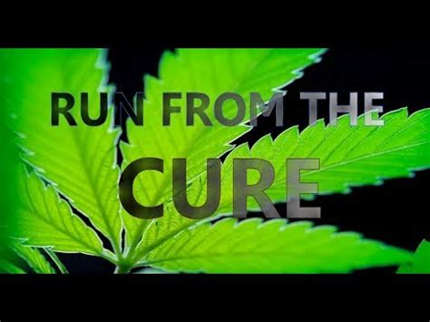 clip hay run from the cure the rick story