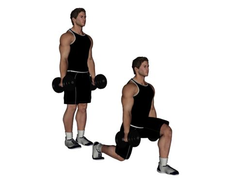 bench lunges dumbbell bench lunges 28 images the bulgarian split
