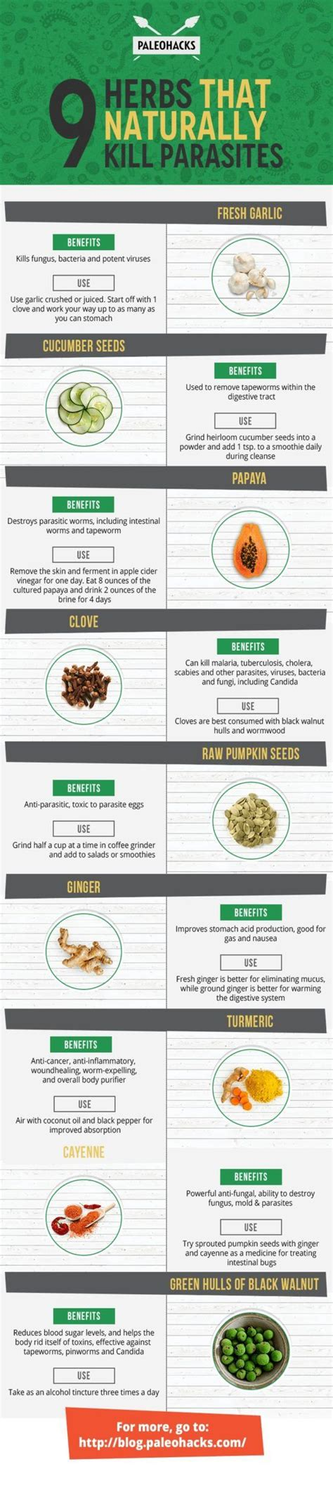 Home Remedy Detox And Cleaners For by 17 Best Ideas About Colon Clean On Colon Detox