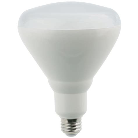 Elegant Lighting 75w Equivalent Soft White E26 Dimmable E26 Led Light Bulb